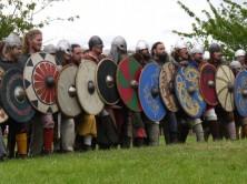 Viking Vigamadr
